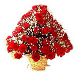 Send these 100 lovely roses and let them depict that how much you miss being there on their special moments.