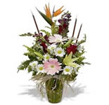 Medium size arrangement includes: Bird of Paradise, gerberas daisies, roses, Asiatic lily, snap dragon, field daisy and assorted greenery. Sweet gift good for any occasion and any time... just because. Spring flower in soft and delicate colors.