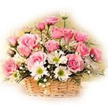 Send this Beautiful arrangement of Roses and Daisies in a basket to your friends and relatives in India.