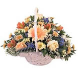 A round basket multi colour arrangement of 24 flowers including Roses, Gerberas and Carnations.