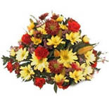 Send this Beautiful arrangement of Roses, Gerberas and Carnations in a basket to your friends and relatives in India.